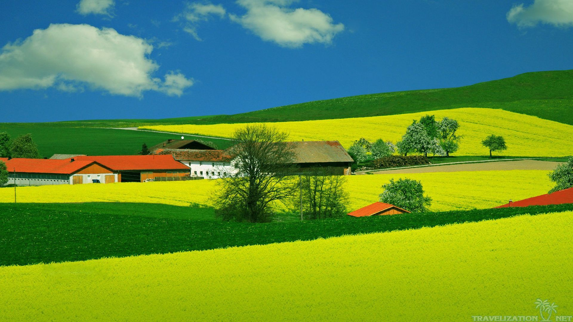 Summer Nature Wallpaper Widescreen 2 Hd Wallpapers Lzamgs With