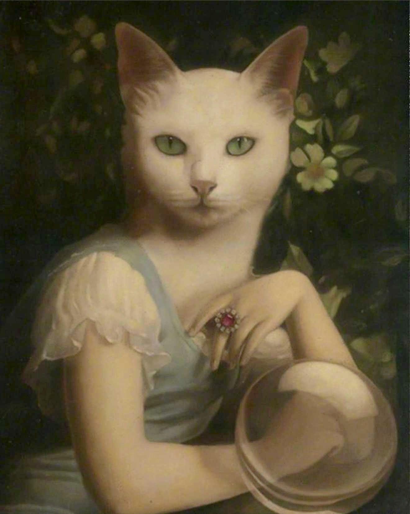 Madamoiselle Mouchete, Stephen Mackey