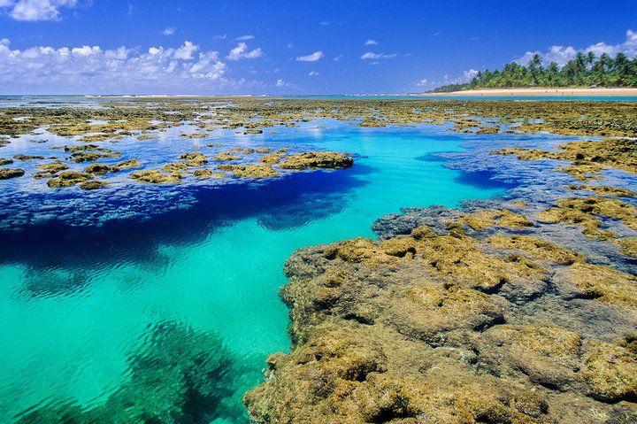 099d0b1e6278 Barra Grande, Bahia: os melhores programas, com crianças! | Barra grande |  Península de maraú, Praia do patacho e Praias do nordeste brasileiro