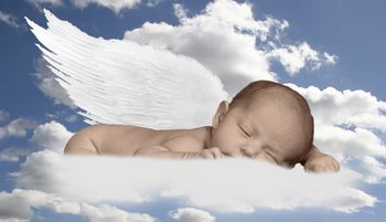 Pictures of Baby Angels - Baby Angel Pictures | Baby angel ...