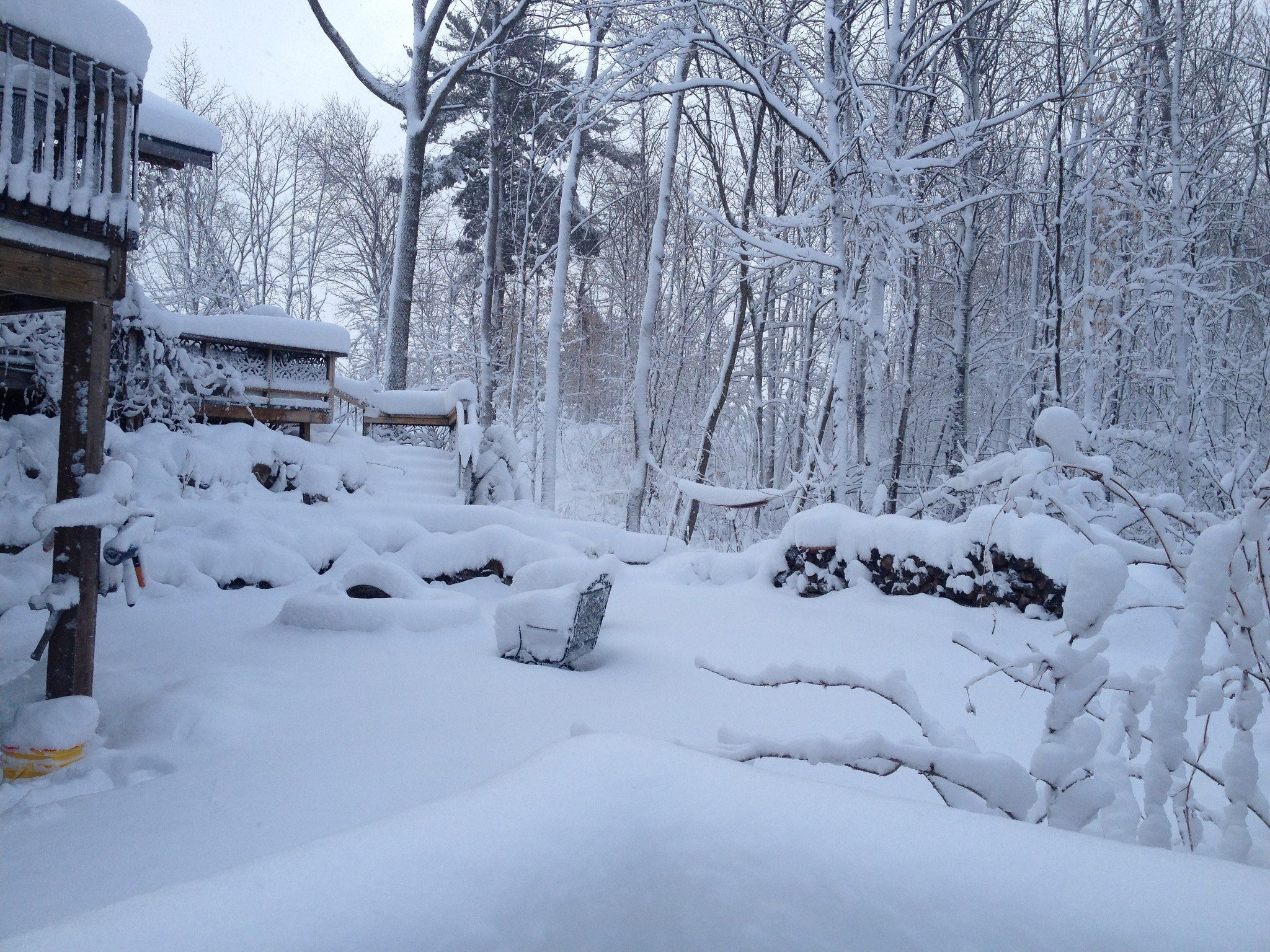Our back yard after a big snow! | Outdoor, Backyard, Yard