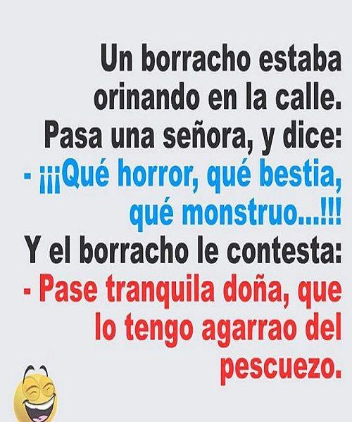 Un Borracho Orinando Best Funny Jokes New Funny Jokes Funny Memes Sarcastic