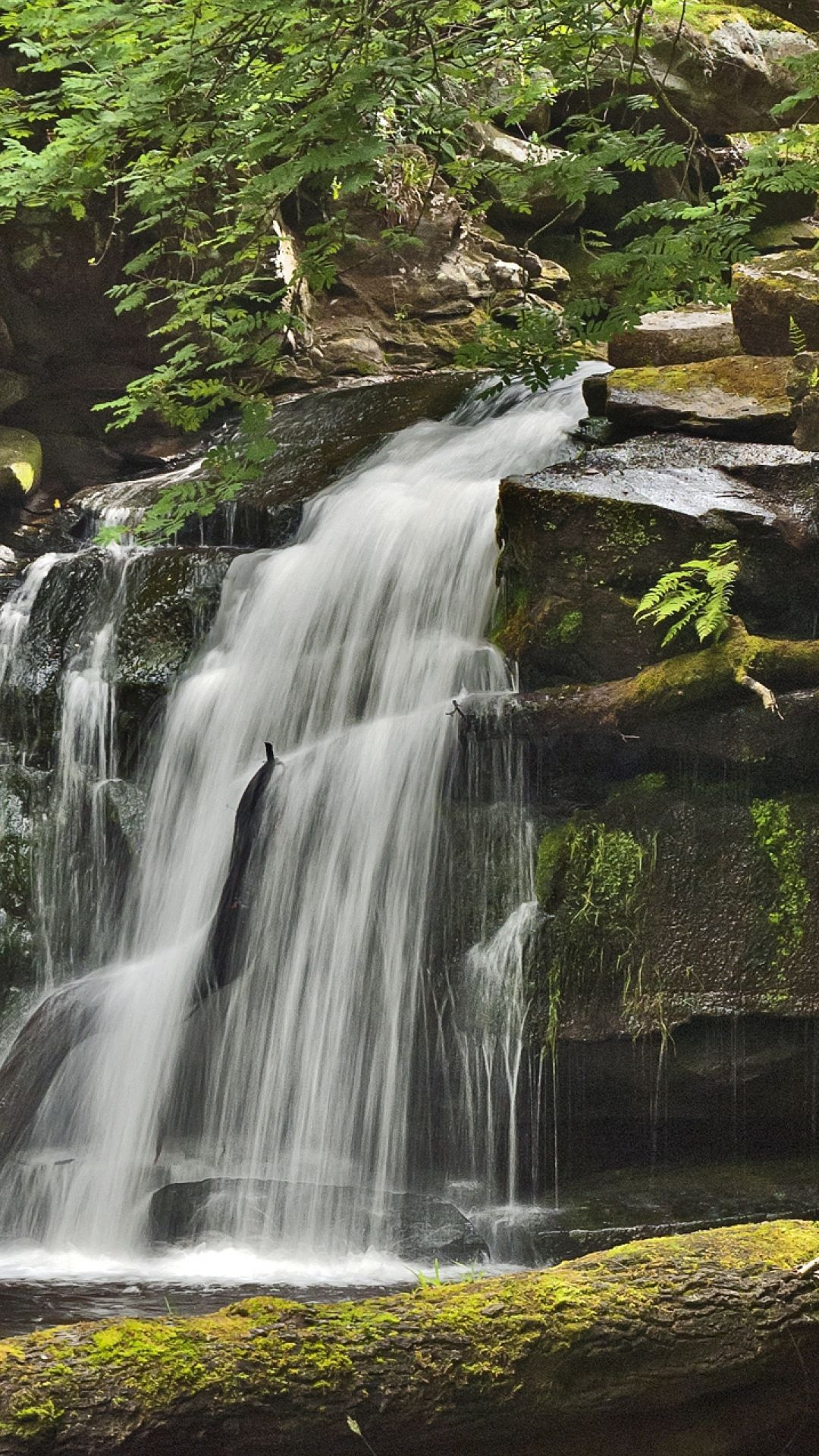 Simple Wallpaper Mobile Waterfall - b0353bab0259c5b57886a39694d703e6  Snapshot_42398.jpg