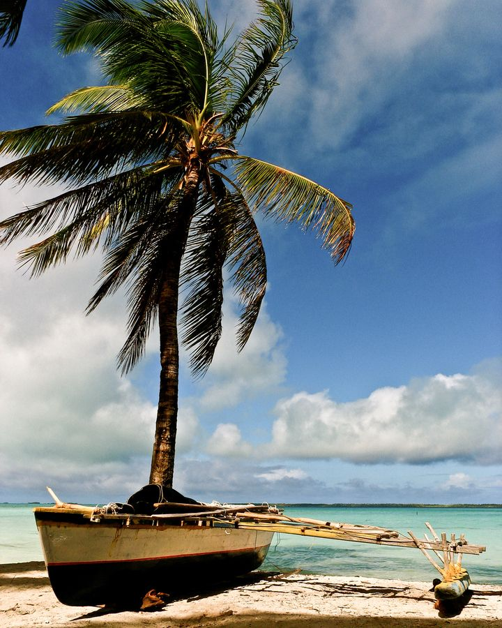 Kiribati, Christmas Island. palm tree, beach, row boat. | Visual ...