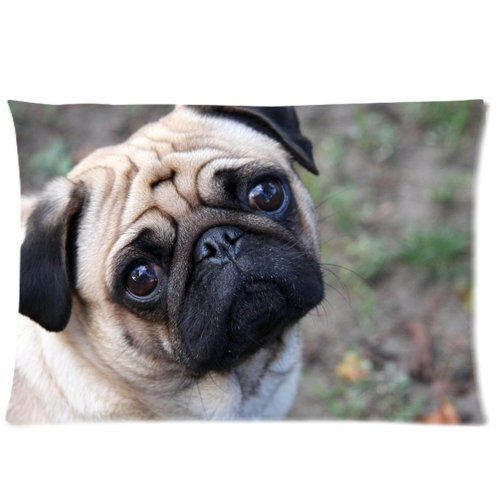 Pin By Makayla Rhodes On Present Ideas Cute Pugs Cute Dogs