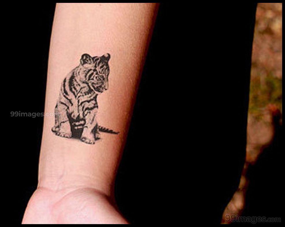 Creative Tiger Tattoos Hd Images 12326 Tigertattoos Tattoos Tiger Tattoo Design Tiger Tattoo Small Small Tattoos