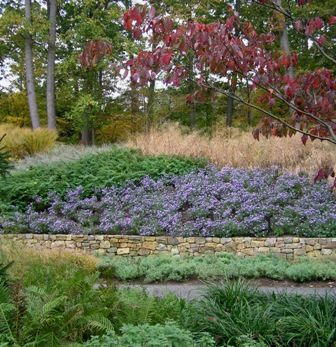 landscaping with large swaths of