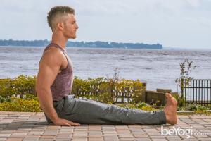 staff pose  dandasana  learn yoga poses basic yoga