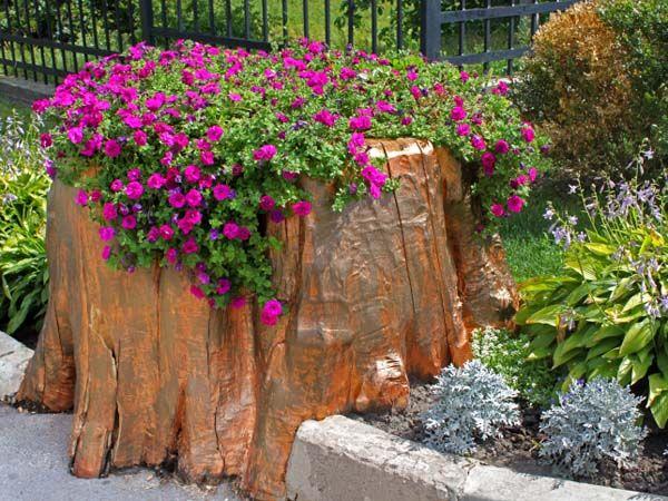 Baumst mpfe entfernen die wichtigsten methoden im berblick baumstumpf hausdekorationen und - Baumstumpf garten dekorieren ...