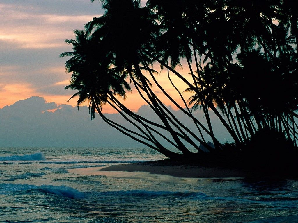 4s7lrg Sri Lanka News Cool Places To Visit Places To Visit