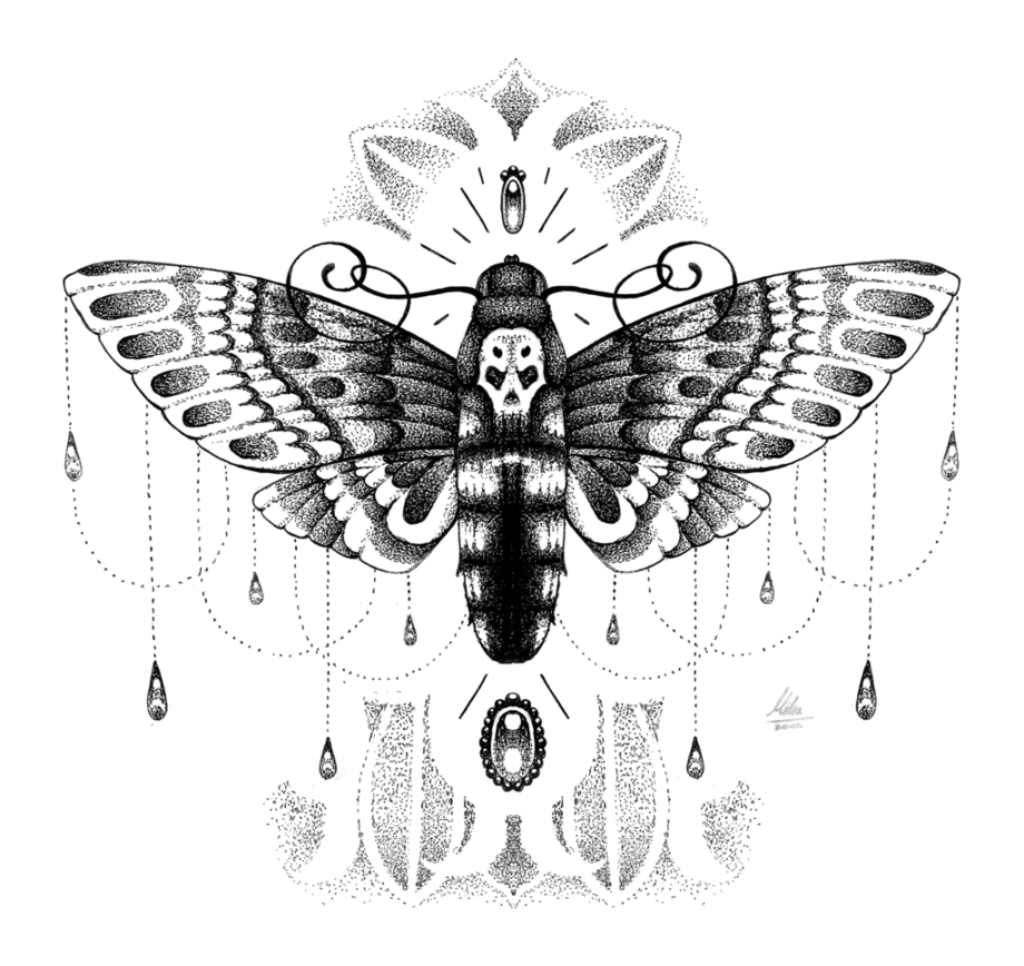 Dead moth symbolism gallery symbol and sign ideas dead head moth by such a mika on deviantart marvelous moths dead head moth by such biocorpaavc