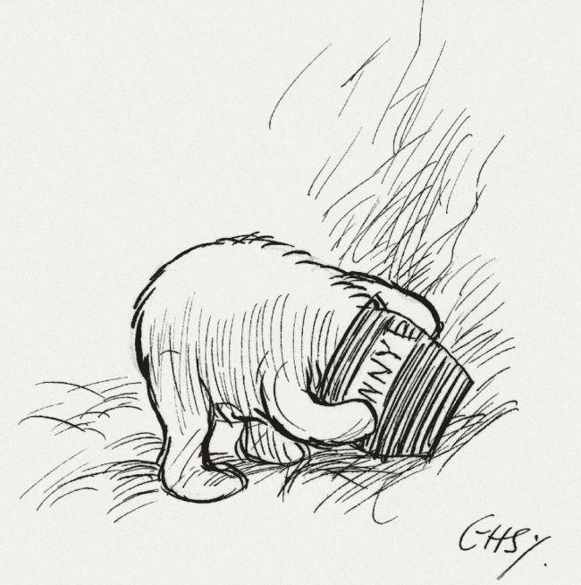 Confira a lista de ensinamentos deste nosso amigo urso.