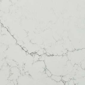 Best Calacatta Botanica Quartz White Quartz Countertops Q 640 x 480