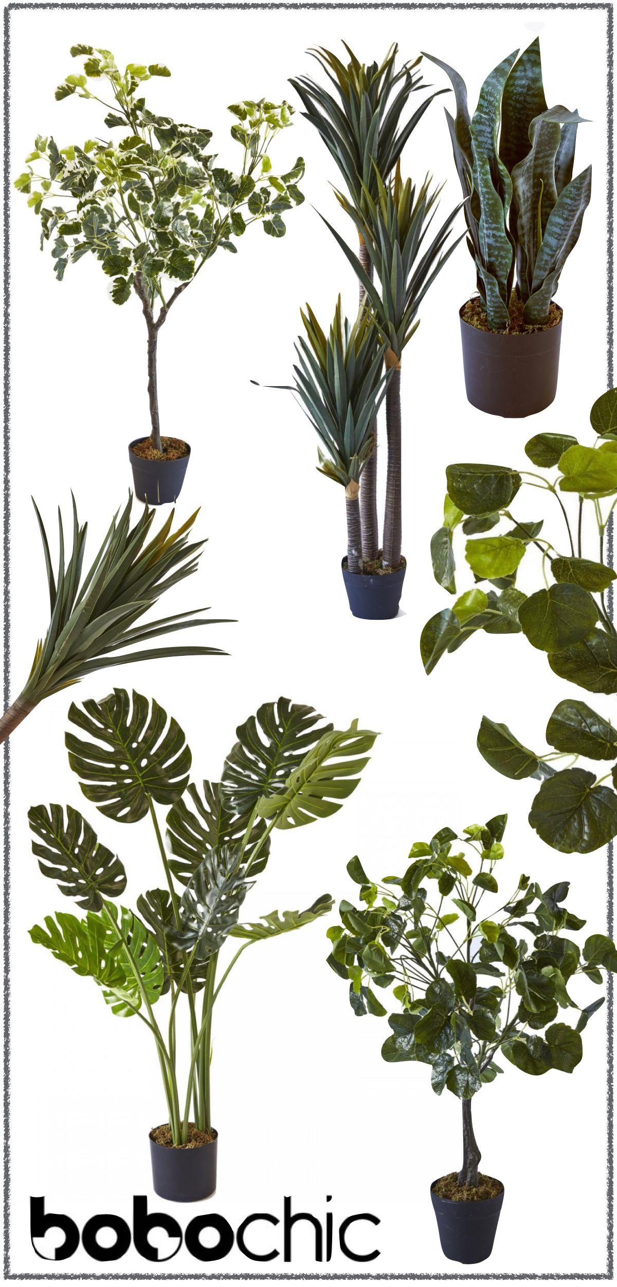Epingle Par Malika Sur ورووود Fausse Plante Plante Decoration Plante