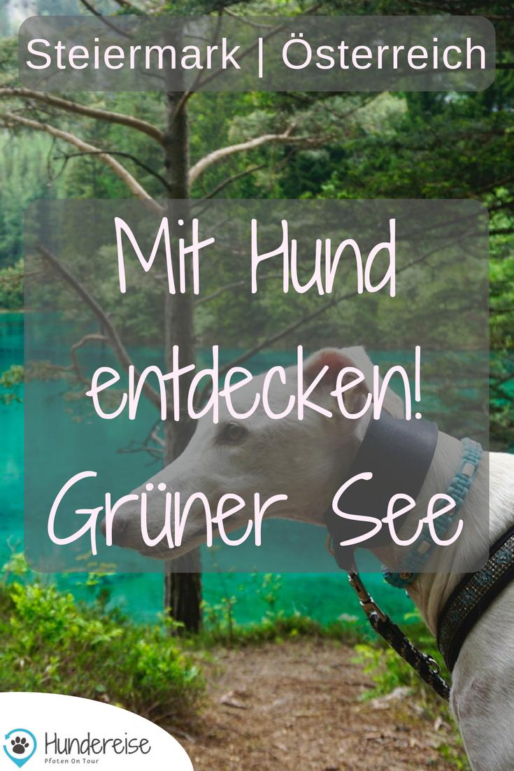 Urlaub Und Wandern Mit Hund In Eisenerz Steiermark Reisen Urlaub Und Gruner See Osterreich