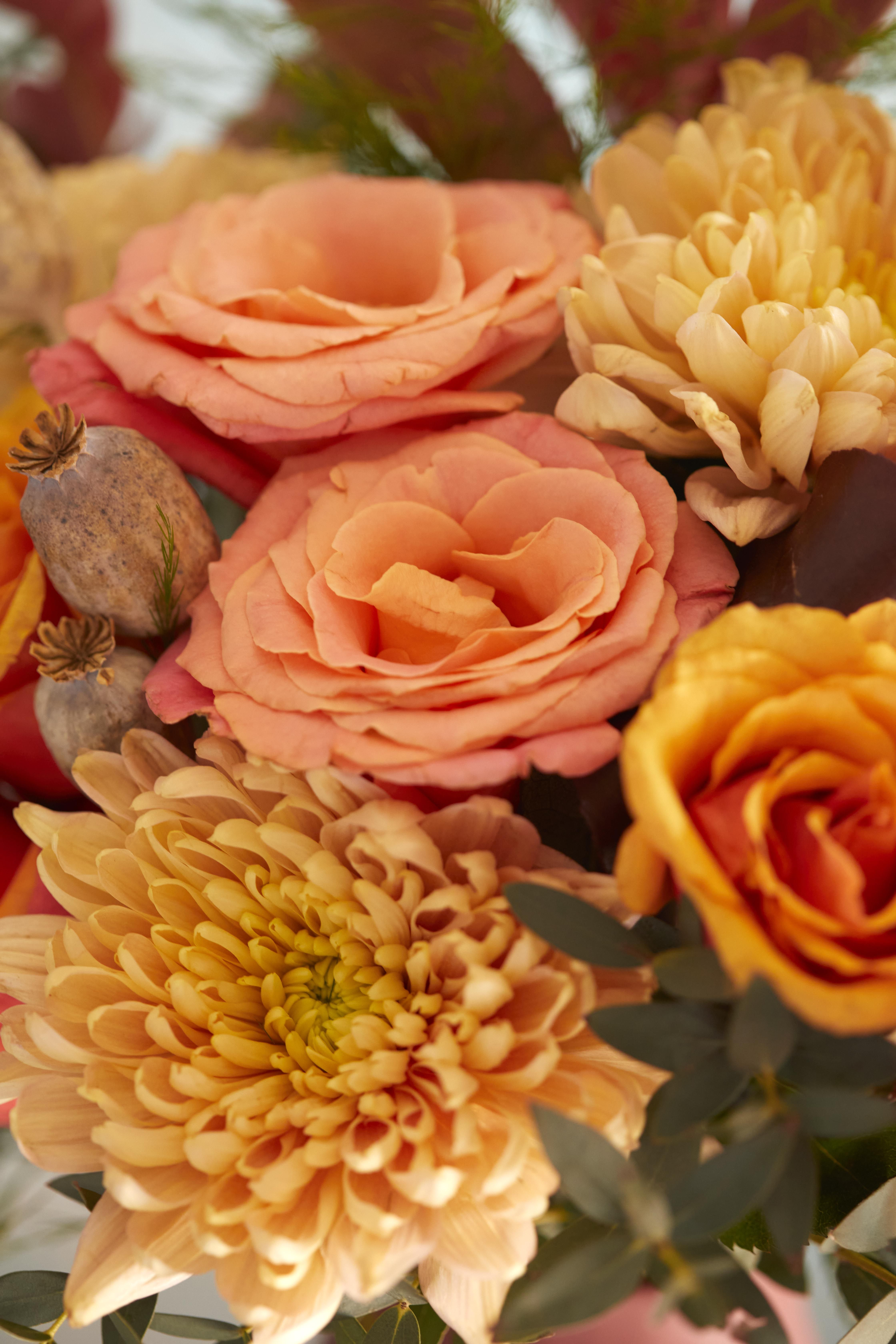 Autumn Flowers Ombre Roses And Autumn Fluffy Chrysanthemums In 2020 Fall Flowers Flowers Bloom And Wild