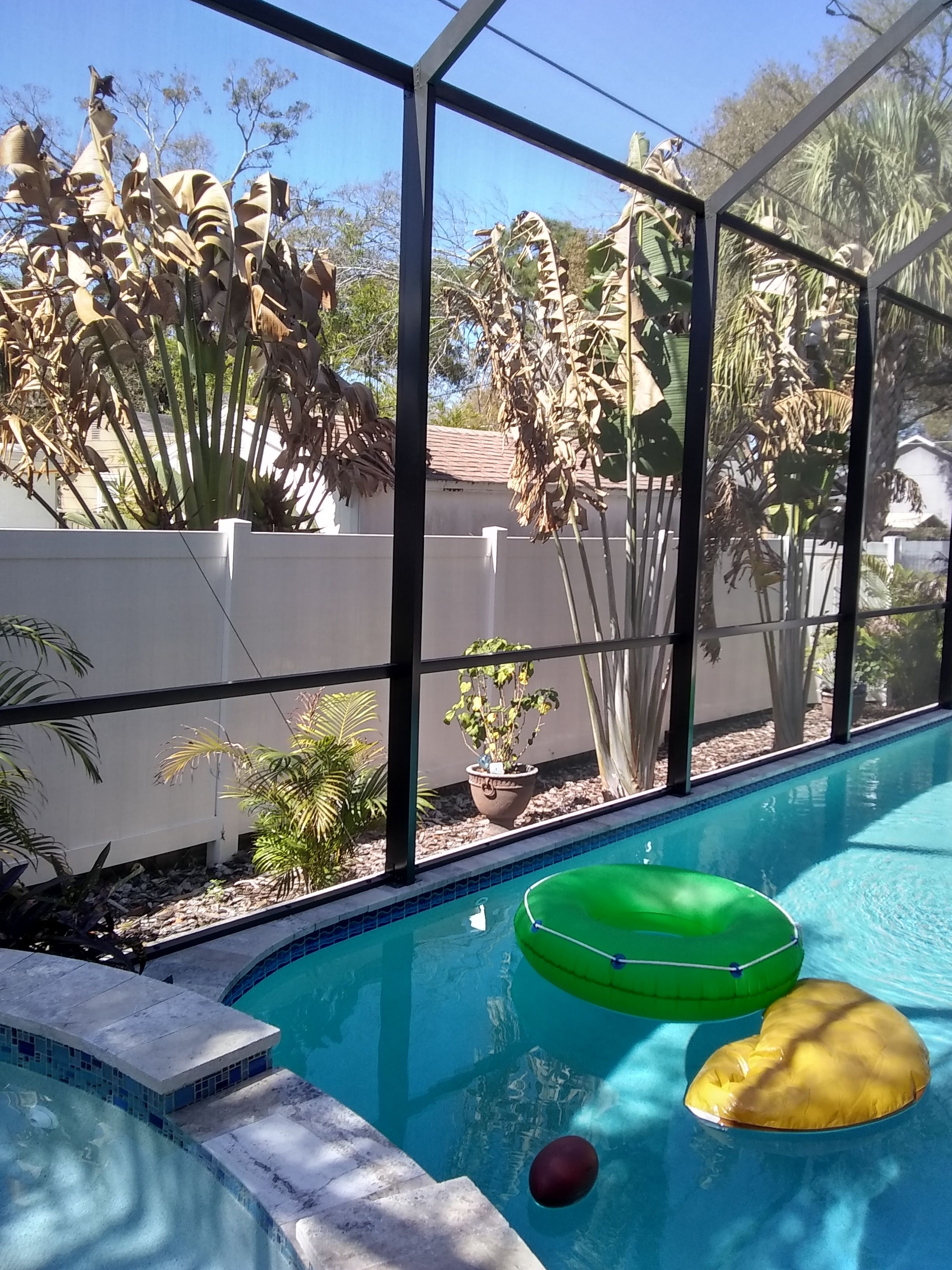 Benefits and disadvantages of swimming pool screen