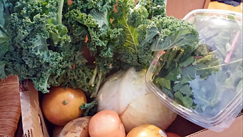 Farm2Table produce.