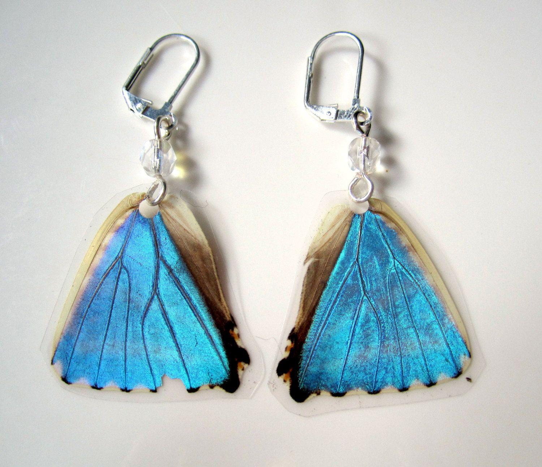 Blue Morpho Butterfly Earrings, Real Butterfly Wing.  via Etsy.