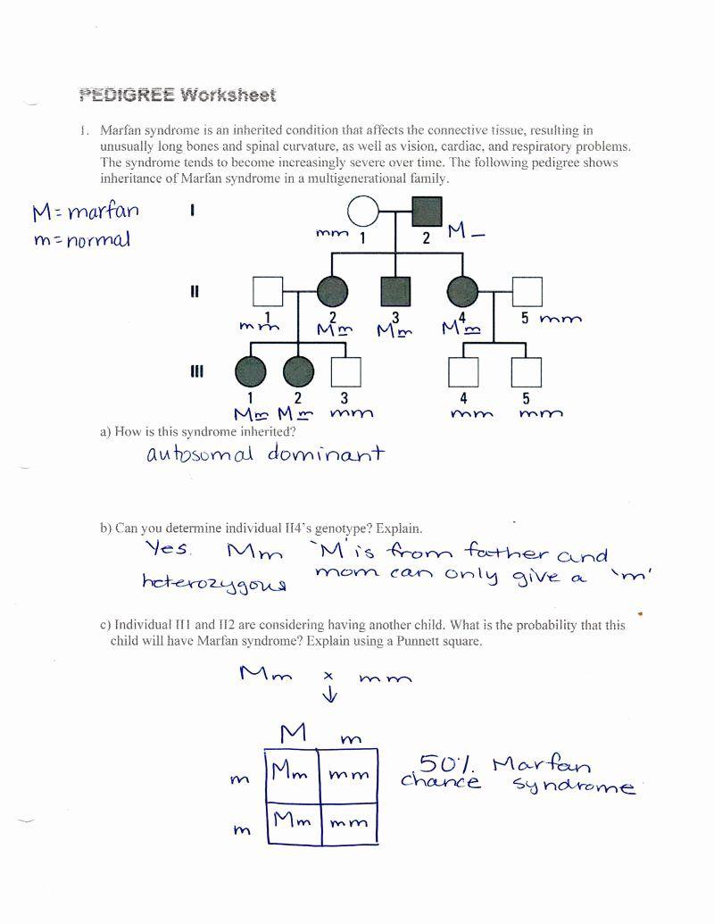 Genetics Pedigree Worksheet Answers Elegant 50 Pedigree Charts Worksheet Autosomal Pedigree In 2020 Genetics Practice Problems Genetics Practice Self Esteem Worksheets