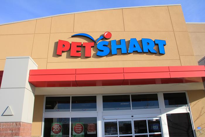 Pet Shart Petsmart Pet Smart Store Doggie Day Camp