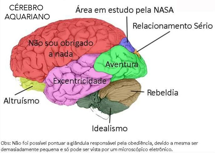 ASTROLOGIA CEREBRAL