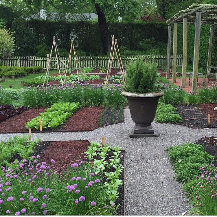 Pin By Teresa Stahr On Raised Bed
