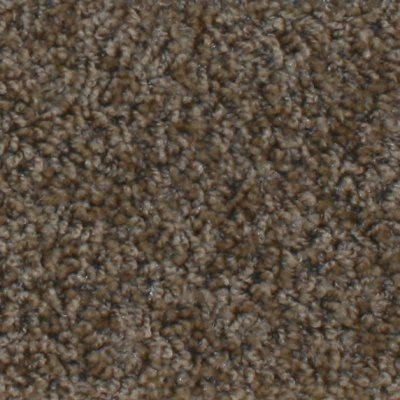 Who Knew That Picking Out The Correct Carpet To Match The Living Room Could Be So Time Consuming Rugs Big Rugs Area Rugs