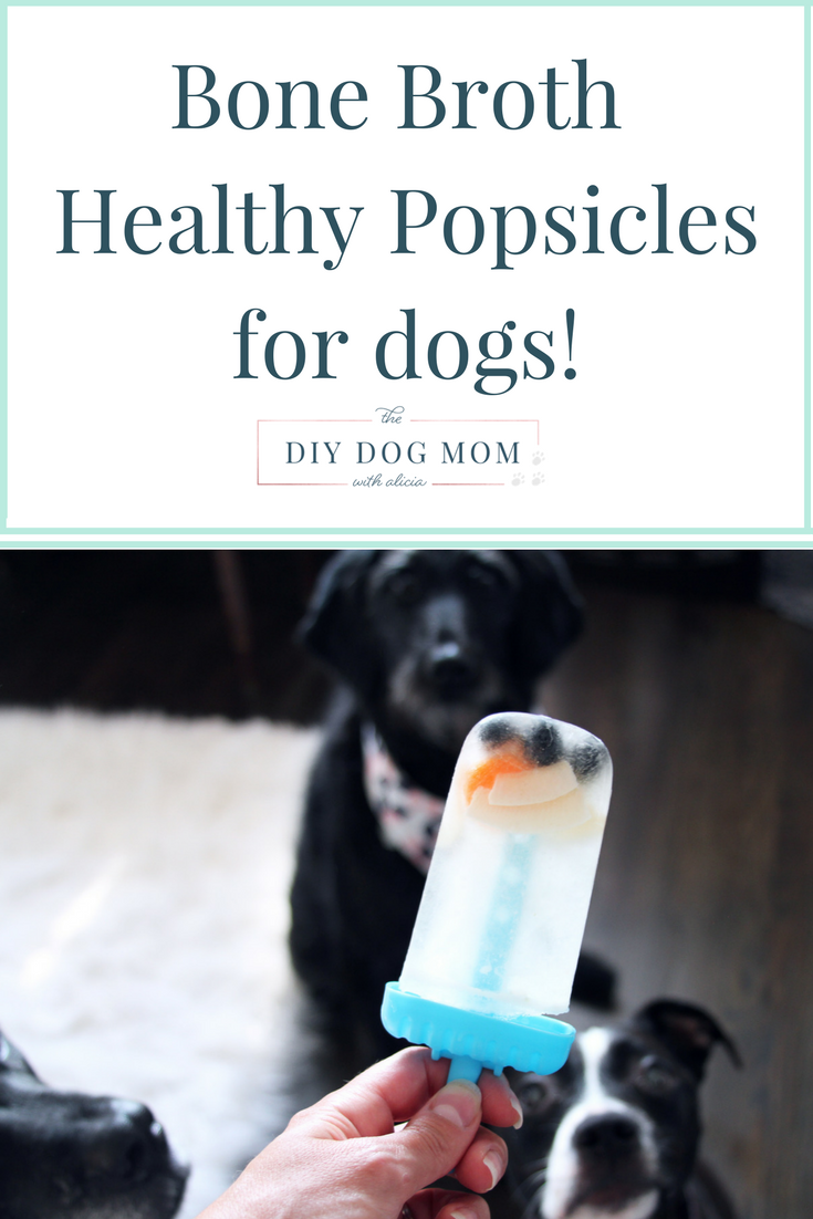 Homemade Bone Broth Popsicles for Dogs dog treats