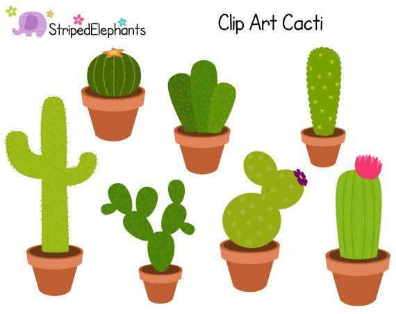 Plant cactus. Cacti clip art clipart