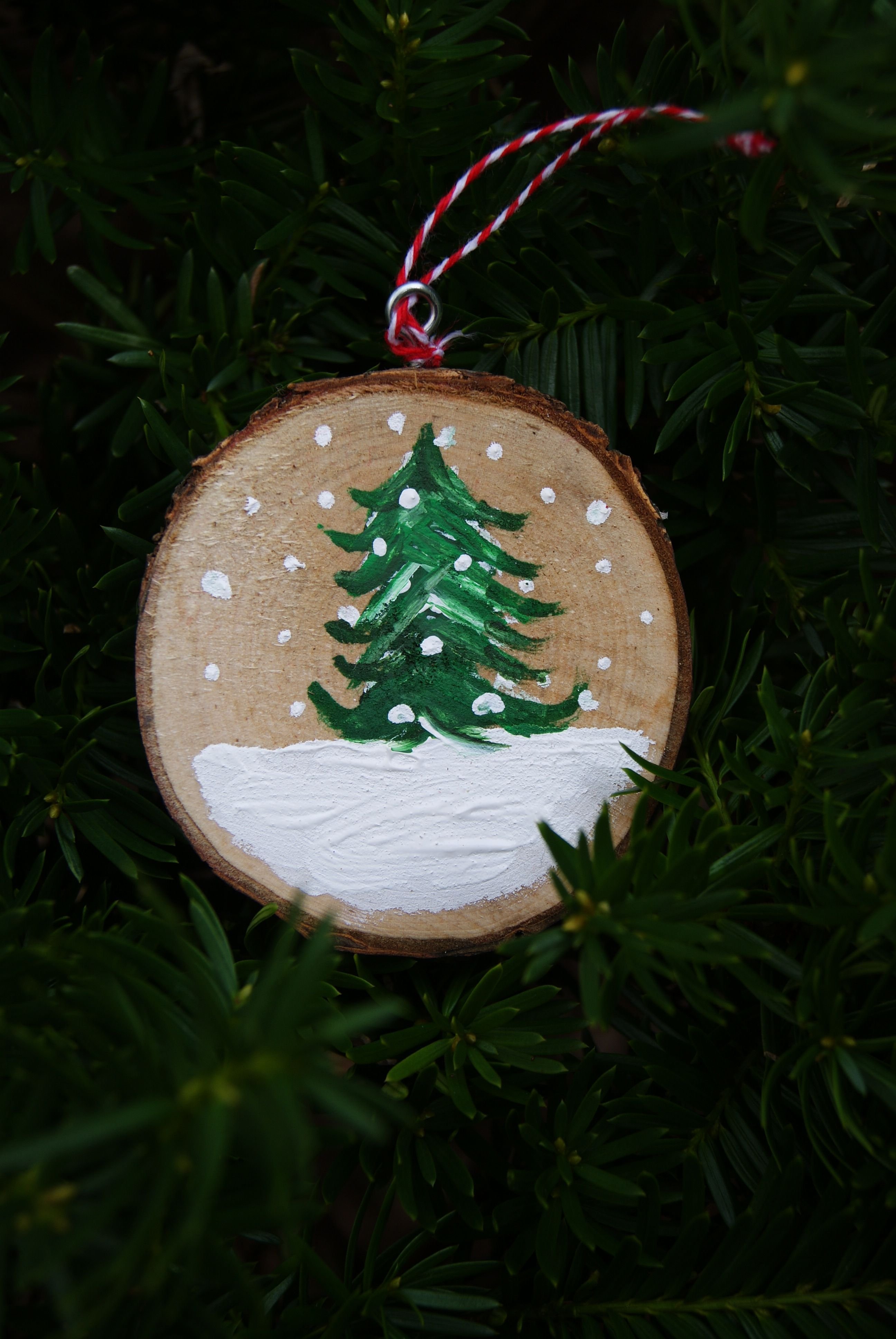Pin By Lacoste On Activite Boule De Noel In 2020 Painted Christmas Ornaments Christmas Ornament Crafts Wood Christmas Ornaments