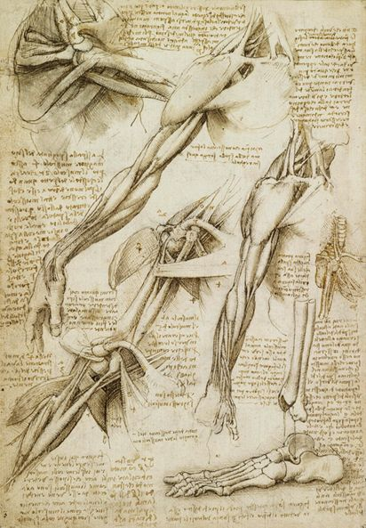 We can learn a great deal from analyzing Leonardo da Vinci drawings ...