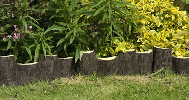 10 Garden Edging Ideas with Wood for an Earthy Garden | Edging ideas ...