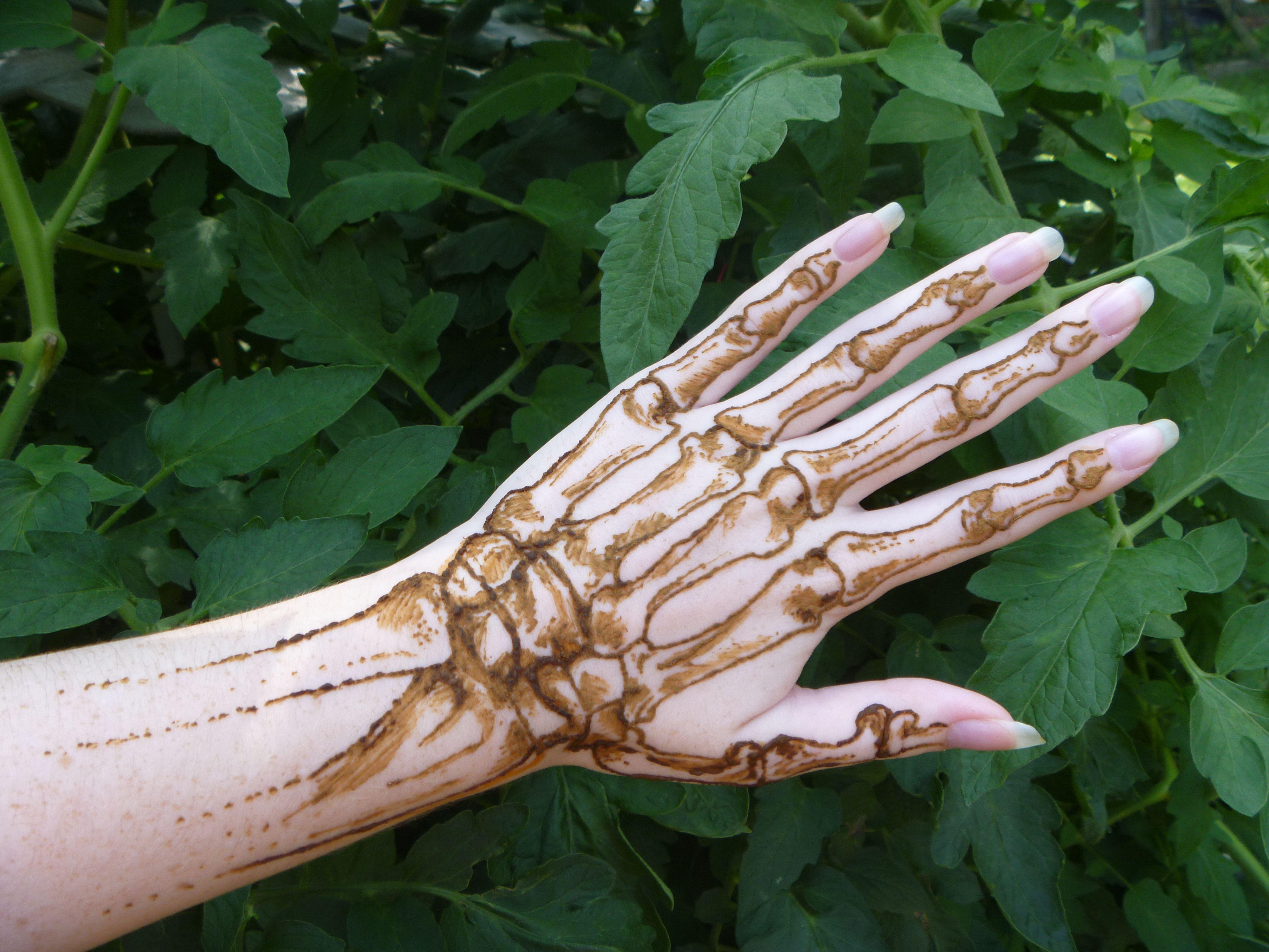Maybe For Halloween Henna Tattoo Designs Hand Henna Henna Designs Hand