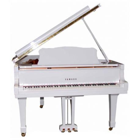 Yamaha Piano Cola C 1x Pwh Piano Acustico Piano Piano Electronico