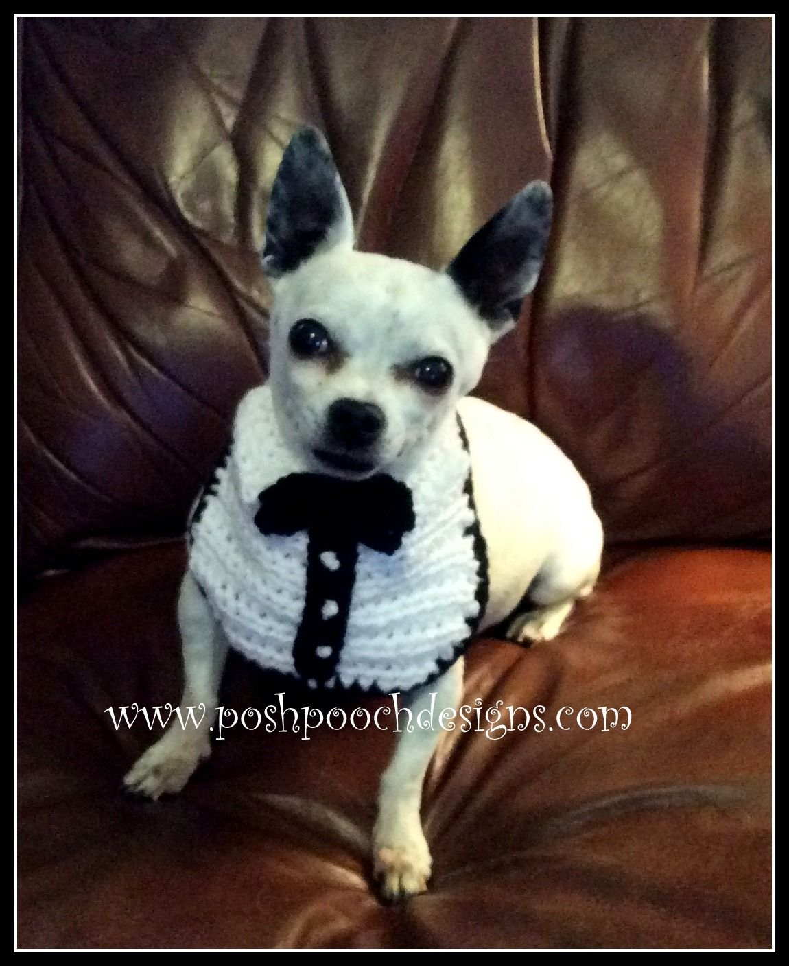 Posh Pooch Designs Dog Clothes: Tuxedo Dog Bib Crochet Pattern ...