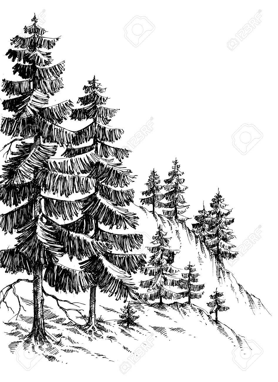 Dessin for t de pins montagne d 39 hiver paysage dessin illustration dessins en 2019 dessin - Paysage enneige dessin ...