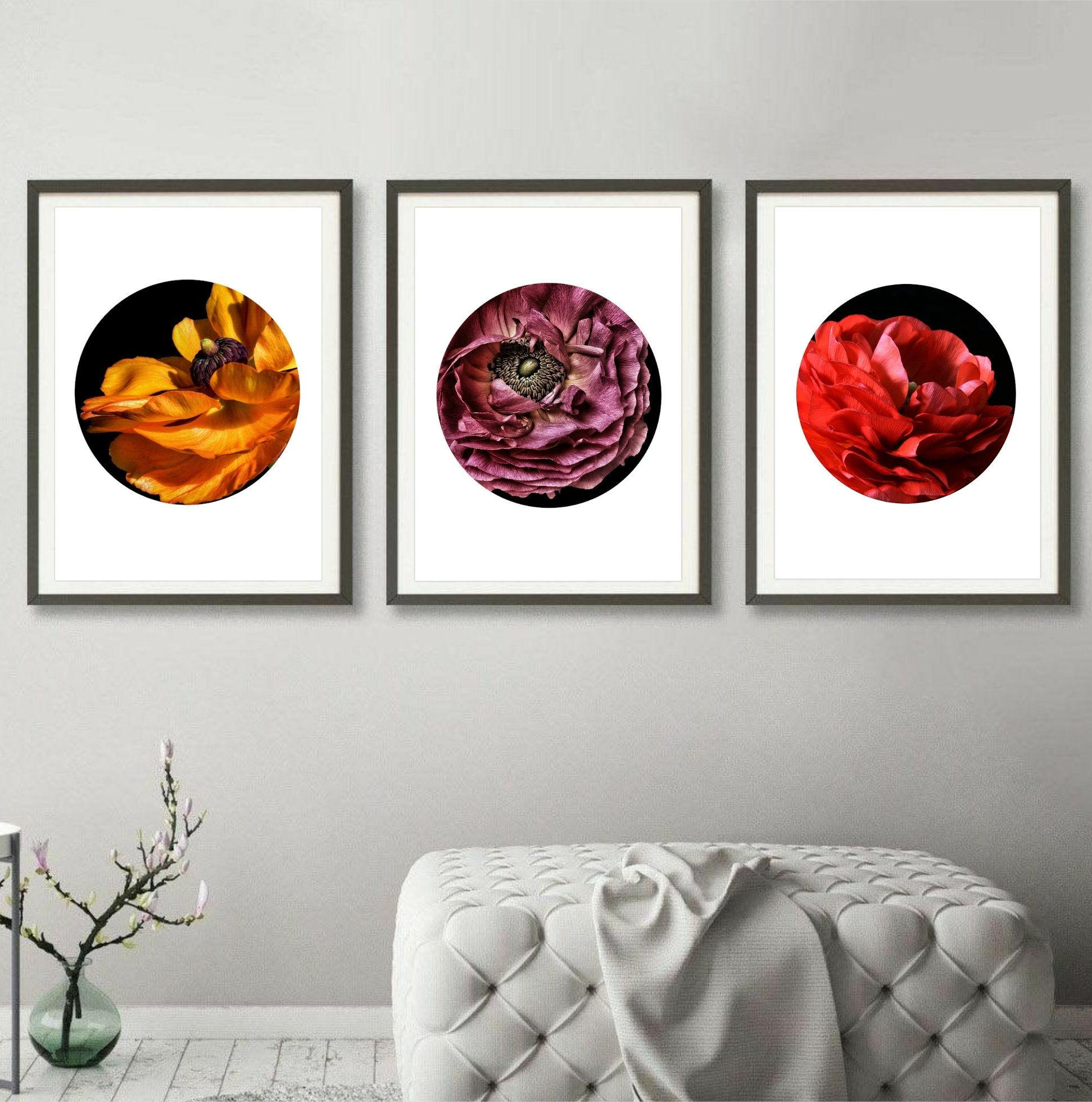 3 Piece Wall Art Set Of Three Ranunculus Flower Prints Photography Artwork In White Circle Modern Botanical Picture