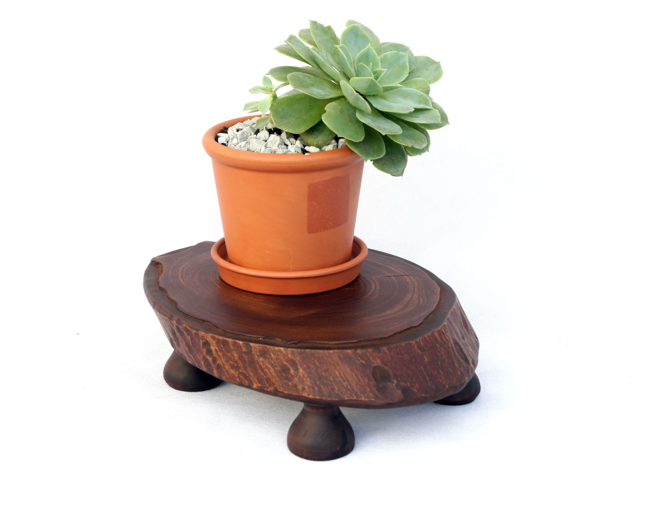 Plant Pot Stand Tree Stump Flower Pot Stand Live Edge