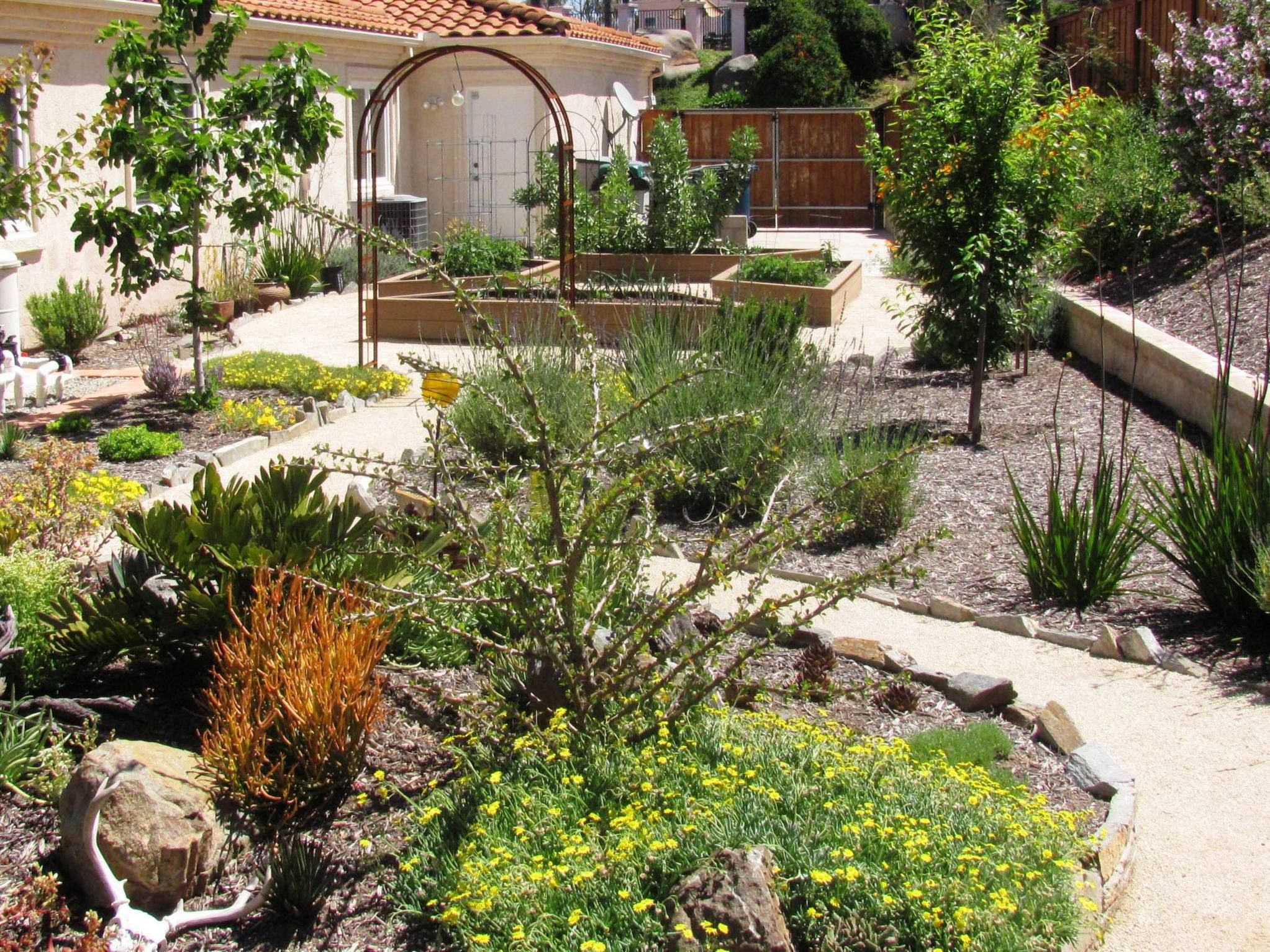 Award Winning Landscape Design San Diego. Backyard ...