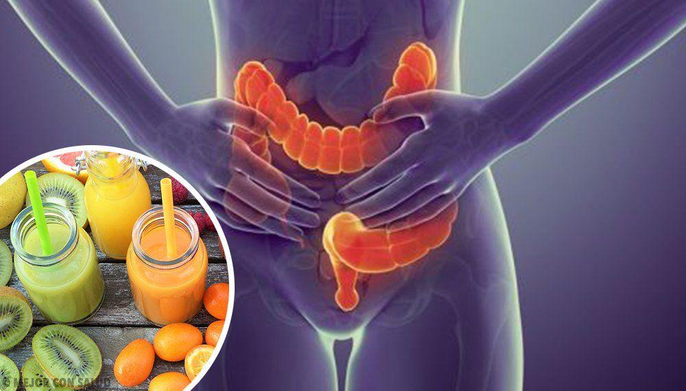 Todos los nutrientes que nos aportan los alimentos son absorbidos ...