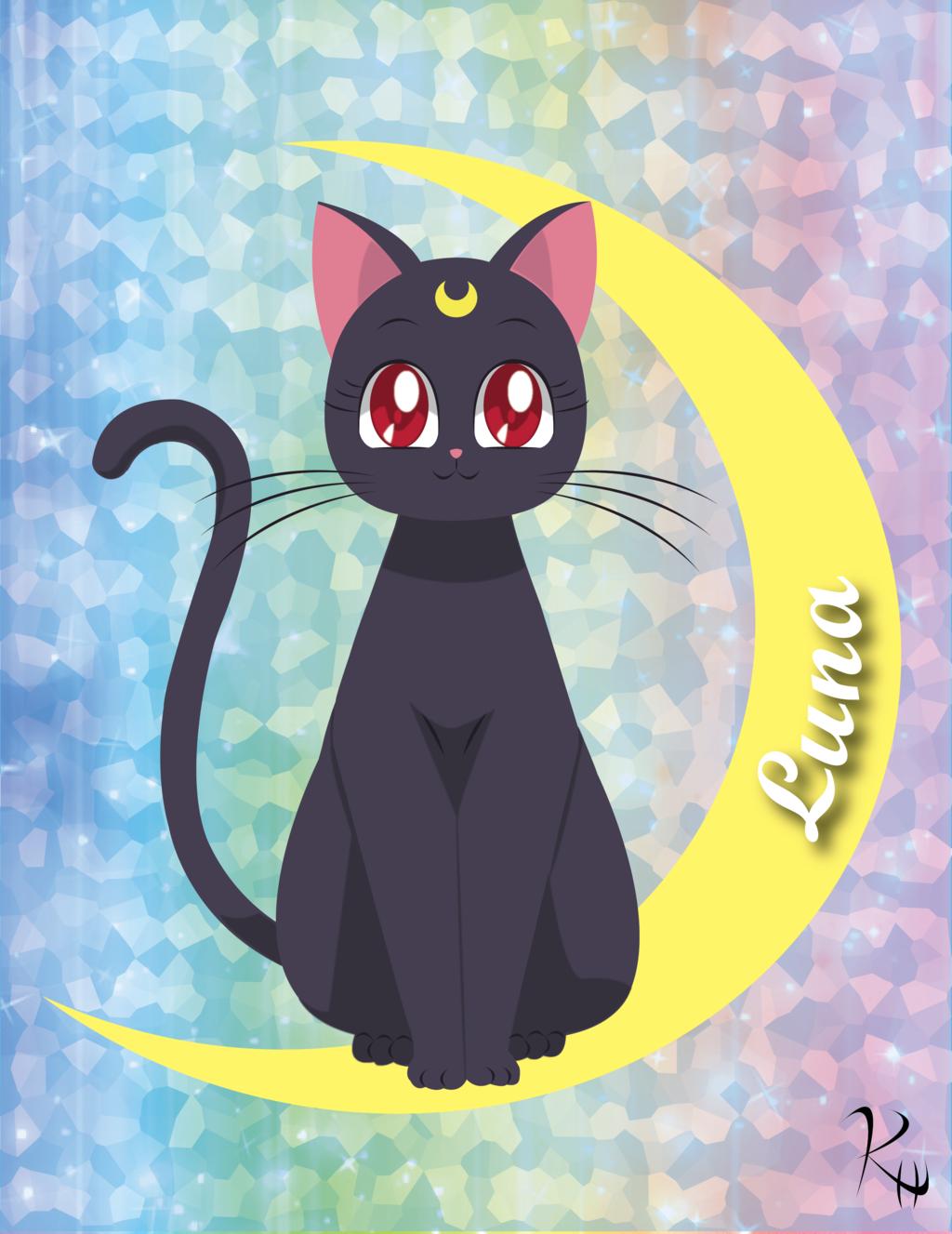 Картинки с сейлормун и котом, летию поздравлением