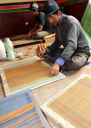 TIBET. Farmer from Lhasa, is making Tibetan incense sticks.