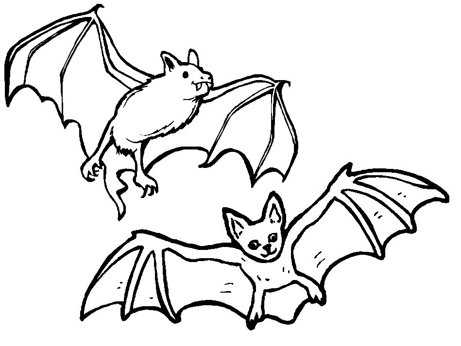 Brown bat coloring page