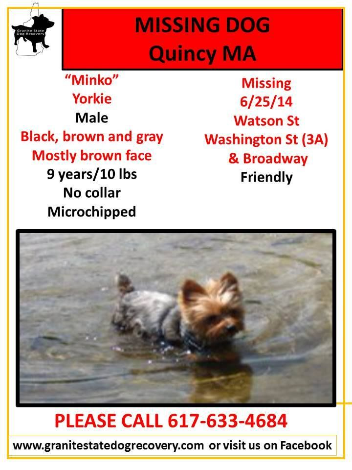 2014 Missing Dogs Of Ma Granite State Dog Recovery Facebook Losing A Dog Brown And Grey Dogs
