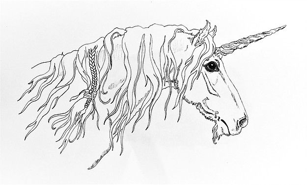 Magical Unicorn Lineart By Sunshine Boone From Skyhorse Studio