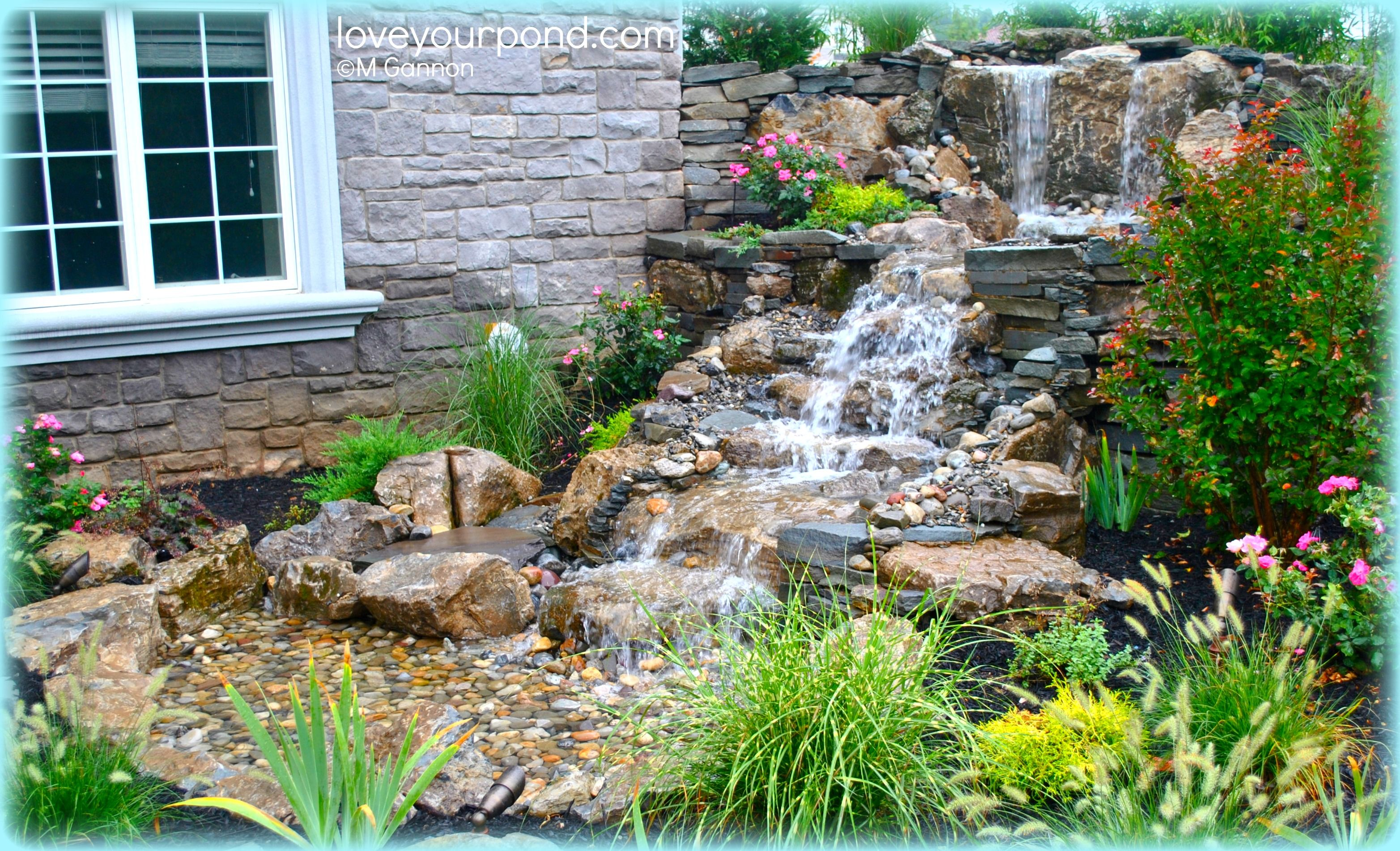 Find This Pin And More On Ponds And Water Features