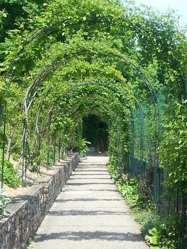Jardins du Rosaire, Lyon | Tourisme, Paysage, Lyon