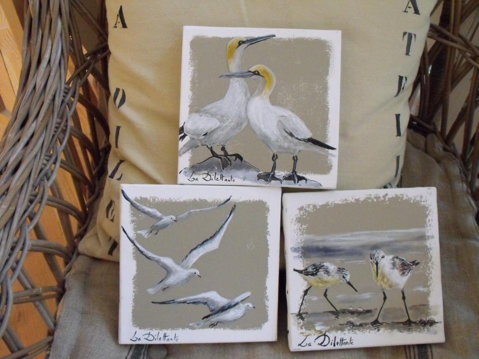 petite série d'oiseaux de mer bretons