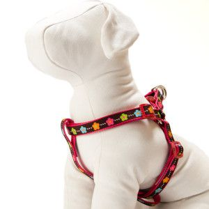 Top Paw Floral Dog Harness Harnesses Petsmart Dog Harness